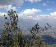 Hike Cerro Manquehue - santiago chile