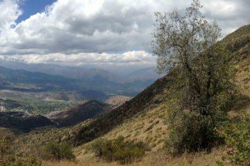 Hiking Chile - Cerro Manquehue santiago